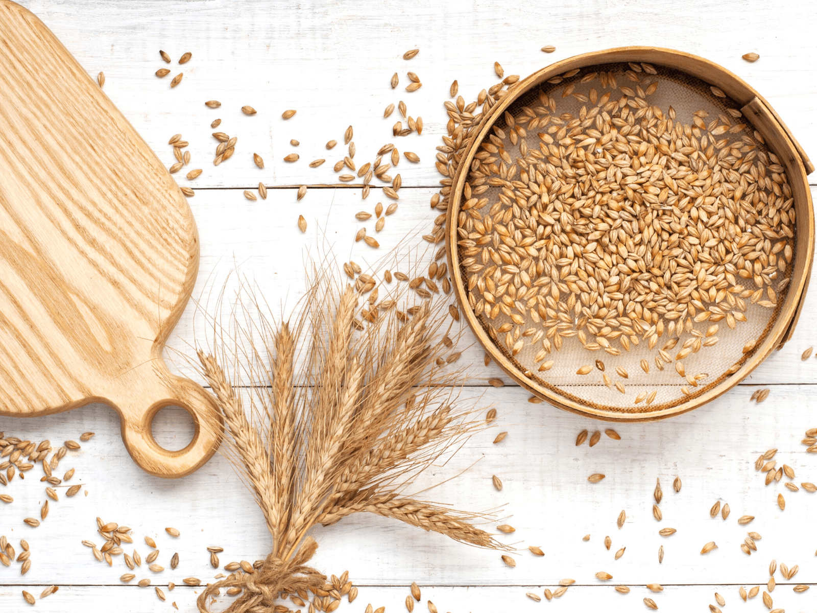 Overhead shot of grains that can be soaked.